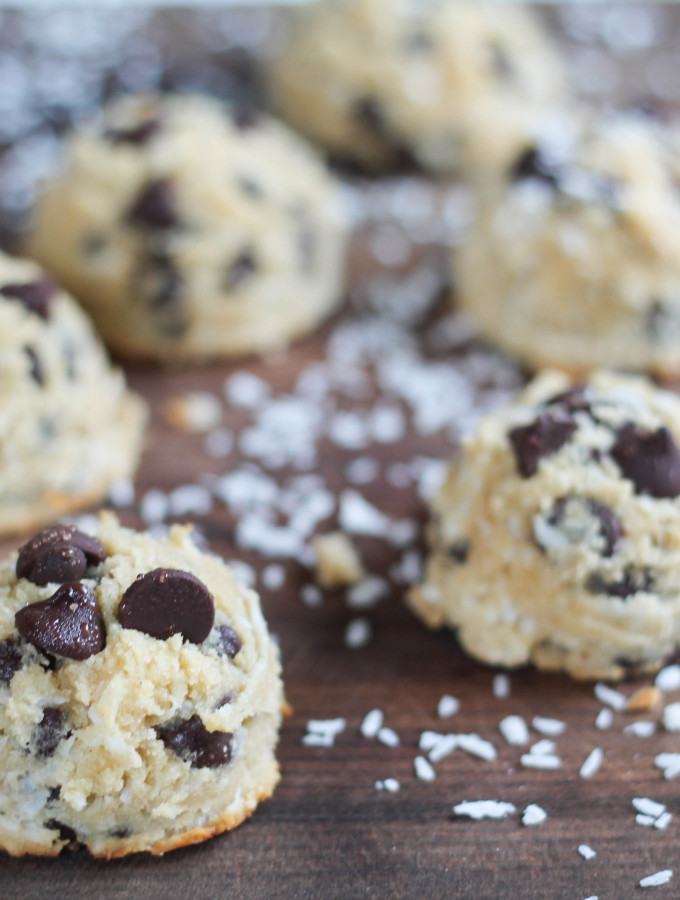 paleo coconut chocolate chip macaroons